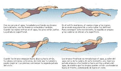 Ejercicios para mejorar en nataci n piscina aprende fitness for Ejercicios espalda piscina